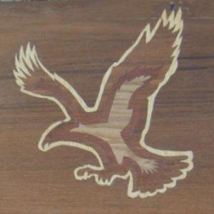 KIT PAPIER - L'aigle