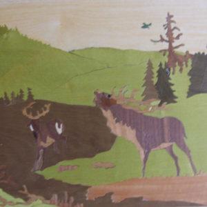 KIT PAPIER - L'appel de la forêt