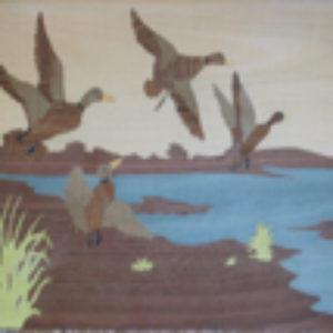 KIT PAPIER - L'envol des canards