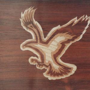 l'aigle N°1