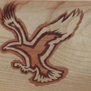 l'aigle N°2