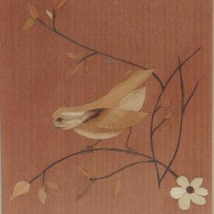 l'oiseau, sur la branche